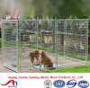 Cage d'animal d'animal familier d'approvisionnement d'animal familier, chenil de crabot, cage de crabot