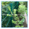 Best Quality with Anping Factory Supply Twin Wire Mesh Fence