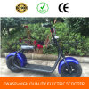 Harley Citycoco 1500W Scooter elétrico com big wheels Front Fork