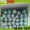 Rede verde-oliva do rolo da coleção para a azeitona/café Havest