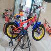 Qualitäts-preiswertes Kind-Fahrrad-Kind-Fahrrad