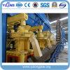 Terminer l'usine de granule d'huile de palmier
