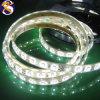 Blanco de la tira de SMD 5050 los 60LED/M LED