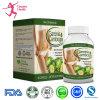 Extrato natural seguro de 100% que Slimming o comprimido da dieta da cápsula
