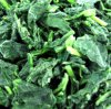IQF Spinach Leaf Cuts dans Highquality