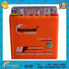 Elektrisches Motorcycle Battery 12V5ah Motorcycle Battery Gel Battery 12n5a China Supplier für Super Highquality