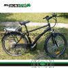 bicicleta 48V13ah elétrica para homens