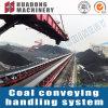 Transportband van de Riem van het Type van Dtii de Vlakke voor het Behandelende Systeem van de Steenkool van de Elektrische centrale