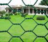 плетение провода PVC/Galvanized 1/2  шестиугольное