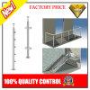 Edelstahl-Treppen-Balkon-Balustrade mit Glas oder Rohr (JBD-B002)