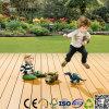 Decking de madeira plástico do balcão do jardim (TW-K03)