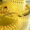 Des LED-Streifen-5050SMD LED Licht Streifen-des Licht-LED (230V/110V)