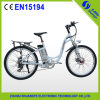 Brushless MotorのセリウムApproval 2 Wheel Electric Bicycle