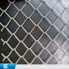 Frontière de sécurité galvanisée enduite par PVC de maillon de chaîne de fil pour des inducteurs de base-ball