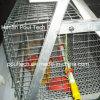 De goede Apparatuur van de Kooien van de Kip van de Jonge kip van de Prijs & van de Kwaliteit voor Verkoop (een Frame van het Type)