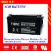 CE/SGS Rechargeable Backup Battery 12V Battery