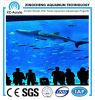 Het Indrukwekkende Flexibele AcrylBlad Aquariums/Transparent van het zoutwater Aquarium/Most