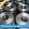 2X2 Galvanized Welded Wire Mesh/4X4 Welded Wire Mesh/ Galvanized Welded Wire Mesh