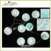 Indicatore luminoso leggiadramente della stringa della lanterna di carta da 3 pollici
