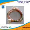 Câble équipé de harnais de fil de longue vie de connecteur de Molex