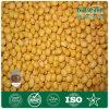 De fabrikant levert Natuurlijk Phosphatidylserine van 100% Poeder (nationaal-170-1)