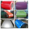 Pre-Painted гальванизированная сталь свертывает спиралью PPGI от сразу изготовления