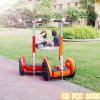 Im Freien Chariot-elektrischer Mobilitäts-Roller-elektrischer Roller