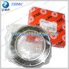 FAG 6013str Deep Groove Ball Bearing