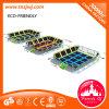 Tremplin coloré jouant le stationnement de tremplin avec le réseau