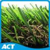 Het Gras van de tuin, het Gras van het Landschap, het Gras van de Decoratie (L30-u6)