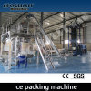 Máquina de gelo da câmara de ar de 20 toneladas/dia com empacotador do gelo