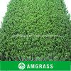 Het Gras van het Dakwerk van het Gras van het Gebied van de voetbal