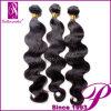 100% 자연적인 러시아 Hair, 5A Raw 러시아 Hair (GP-RS-BD)