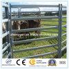 Zaun verwendetes Pferden-Panel/Zaun-Panel/Vieh-Panel