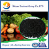 Fertilizante orgânico do grânulo do ácido Humic de 50%