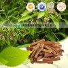 Album naturel pur de Santalum de médecine d'herbe de 100%