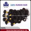 ブラジルのバージンの毛ボディ波のWeft人間の毛髪の拡張