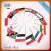 Национальное Hand Waving Flag с Flag Поляк (HYHF-AF059)