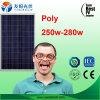 Mono poli comitati solari poco costosi caldi di 150W 250W 300W in azione