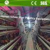 Scaletta d'argento del rifornimento della stella un tipo gabbie di batteria del pollo di strato per l'azienda agricola della Nigeria