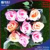 Qualitäts-runder Blumen-acrylsauerkasten für 9 Rose