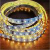 임시 직원 고품질 SMD3527LEDs를 가진 변하기 쉬워 유연한 LED 지구 빛을 착색하십시오