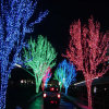 Quirlande électrique de Noël de DEL pour la lumière Decoraton d'arbre