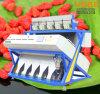 Hefei produjo la clasificadora del compaginador del color del RGB, máquina de la transformación de los alimentos