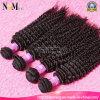 Cheveux en gros bon marché crépus de Mongolian de Vierge de cheveux bouclés d'Afro