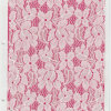 Raschel Lace Fabric (draag oeko-tex certificatie yf3120)