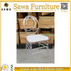 بلاستيكيّة جليد كرسي تثبيت فينيكس كرسي تثبيت عرس كرسي تثبيت لأنّ عمليّة بيع