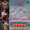 USP 99% het Materiële Ruwe Poeder van Cypionate van het Testosteron Bodybuilding