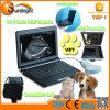 De mini Laptop Veterinaire Machine van de Ultrasone klank van de Dierenarts van Ce van de Ultrasone klank zon-806f met Rectale Sonde