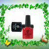 Origem Fabricante Cheap Color Gel Uail Polish